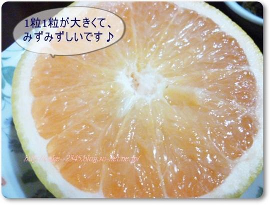 グレープフルーツ 通販.JPG